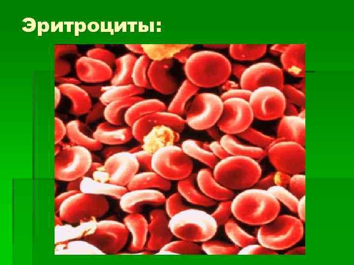 Эритроциты: