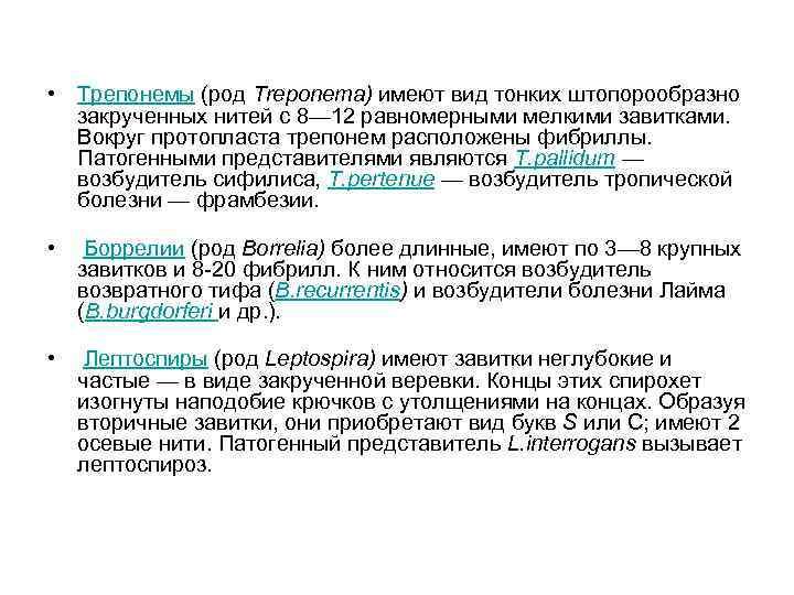 • Трепонемы (род Тrероnеmа) имеют вид тонких штопорообразно  закрученных нитей с 8—