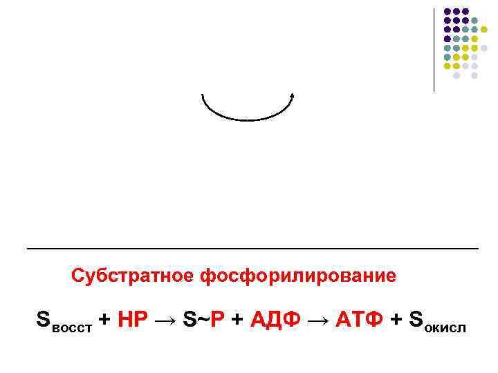 Субстратное фосфорилирование Sвосст + НР → S~P + АДФ → АТФ +