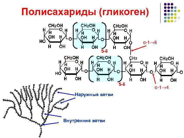 Полисахариды (гликоген)      α-1→ 6     5