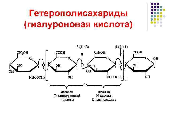 Гетерополисахариды (гиалуроновая кислота)
