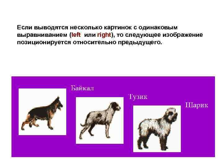 Если выводятся несколько картинок с одинаковым выравниванием (left или right), то следующее изображение позиционируется