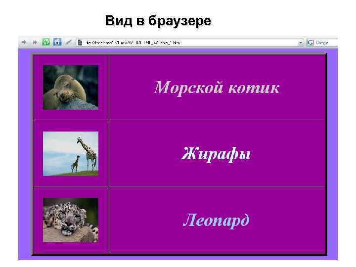 Вид в браузере