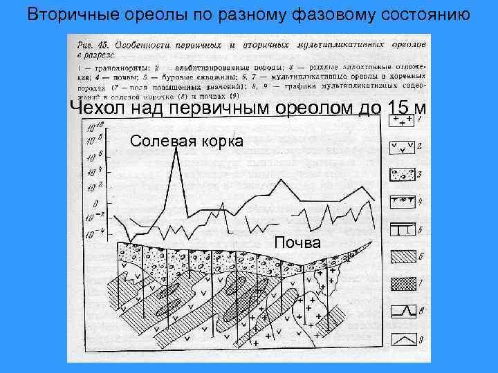Вторичные ореолы по разному фазовому состоянию   Чехол над первичным ореолом до 15