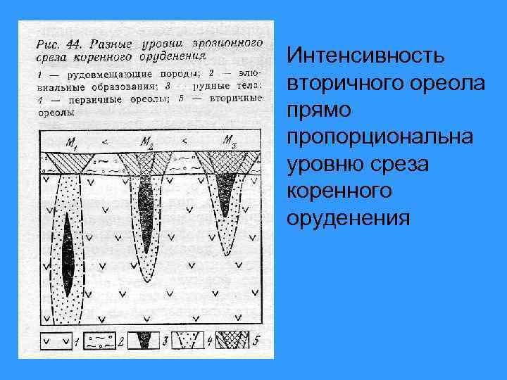 Интенсивность вторичного ореола прямо пропорциональна уровню среза коренного оруденения