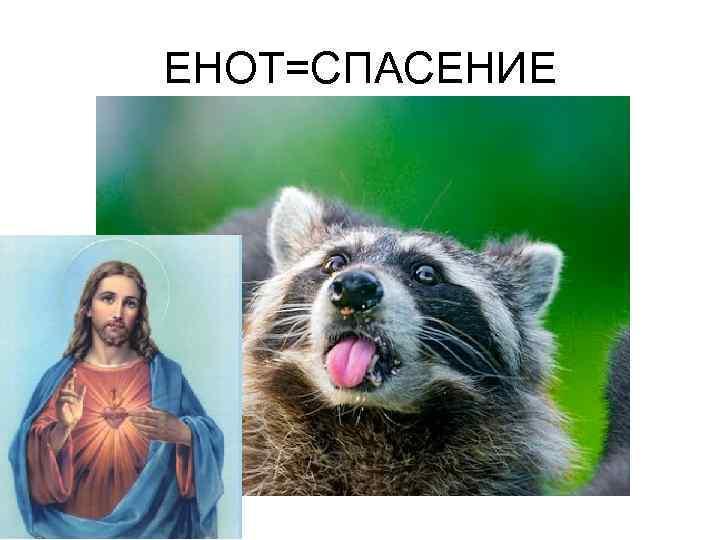 ЕНОТ=СПАСЕНИЕ