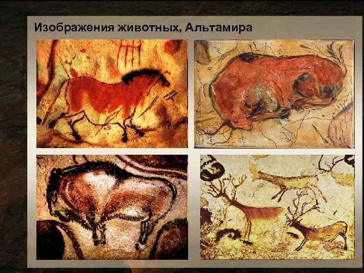 Изображения животных, Альтамира