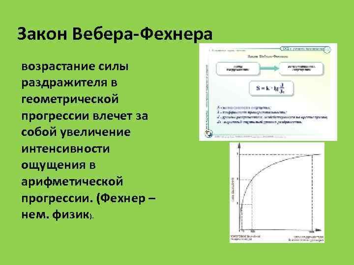 Закон Вебера-Фехнера возрастание силы раздражителя в геометрической прогрессии влечет за собой увеличение интенсивности ощущения
