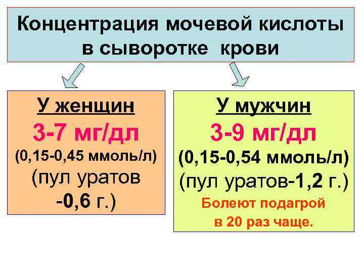 Концентрация мочевой кислоты в сыворотке крови У женщин    У мужчин