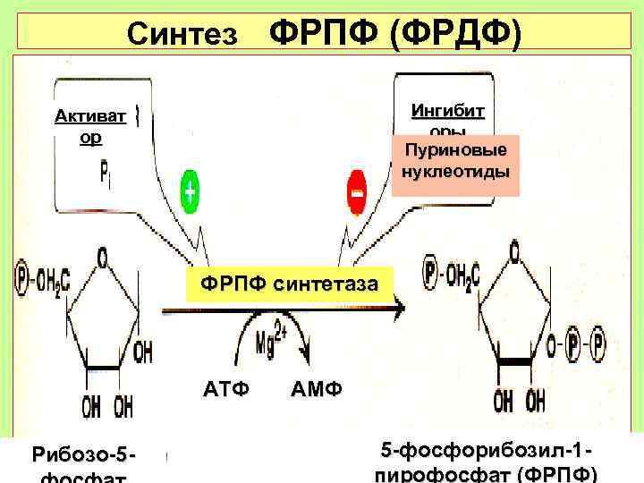 Синтез ФРПФ (ФРДФ)  Активат     Ингибит ор