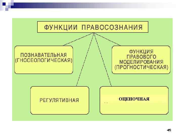 ОЦЕНОЧНАЯ   45