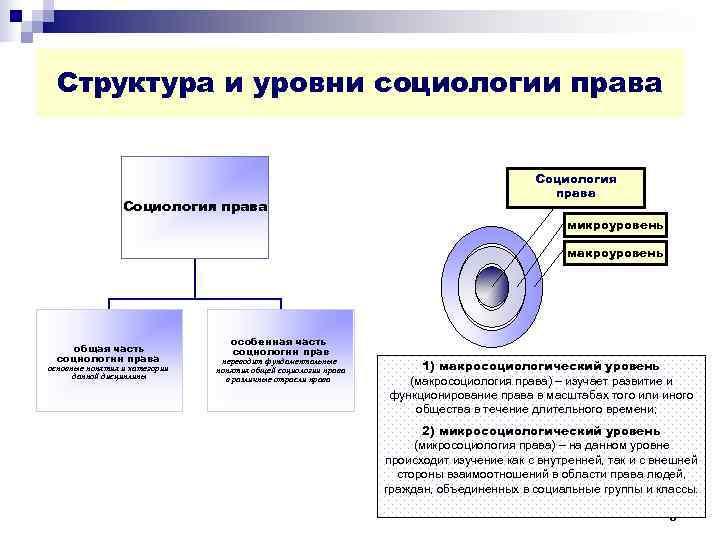 Структура и уровни социологии права        Социология