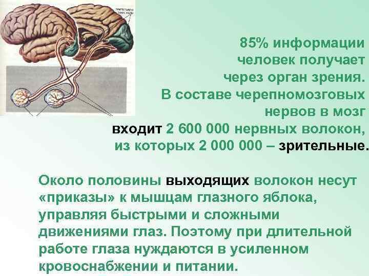 85% информации     человек получает