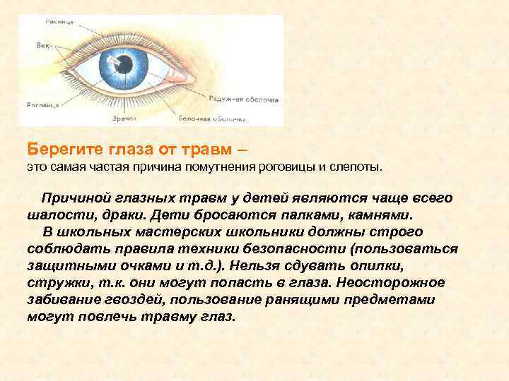 Берегите глаза от травм – это самая частая причина помутнения роговицы и слепоты. Причиной