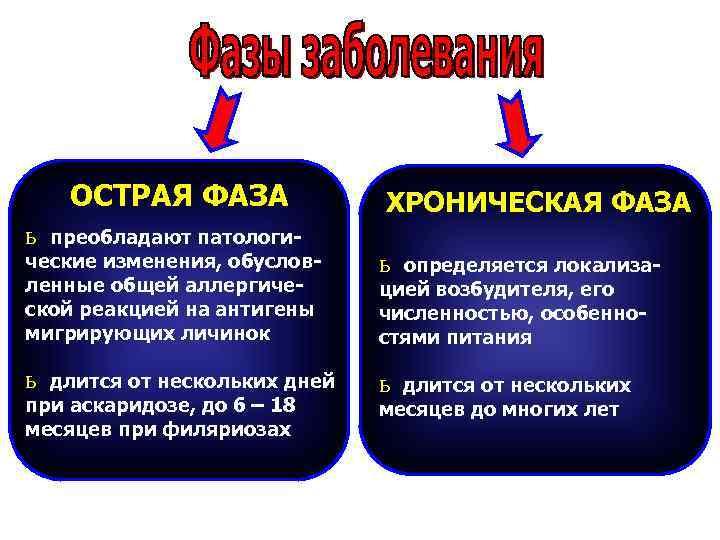 ОСТРАЯ ФАЗА    ХРОНИЧЕСКАЯ ФАЗА ь преобладают патологи- ческие изменения,