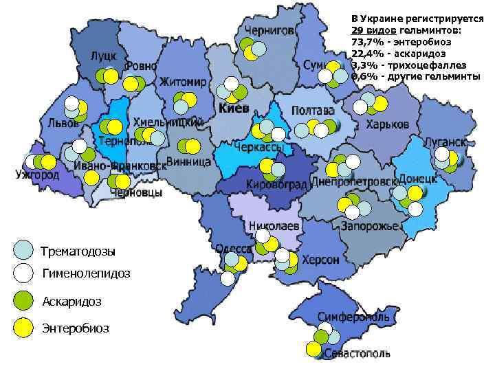 В Украине регистрируется   29 видов гельминтов: