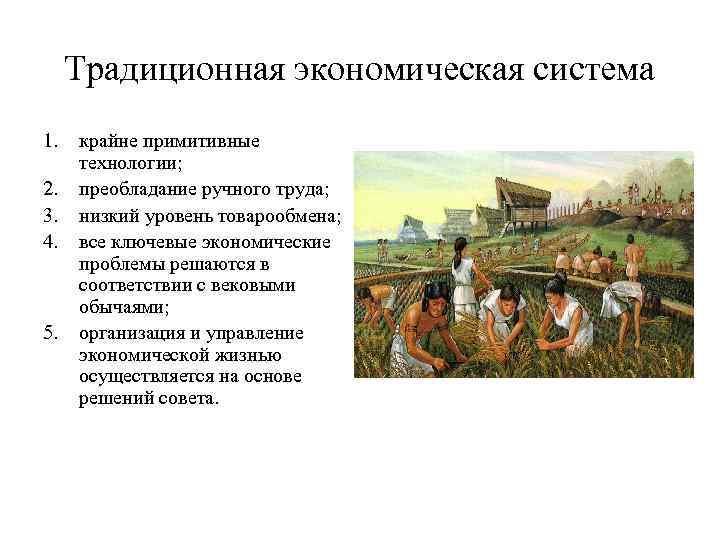 Традиционная экономическая система 1.  крайне примитивные  технологии; 2.  преобладание ручного