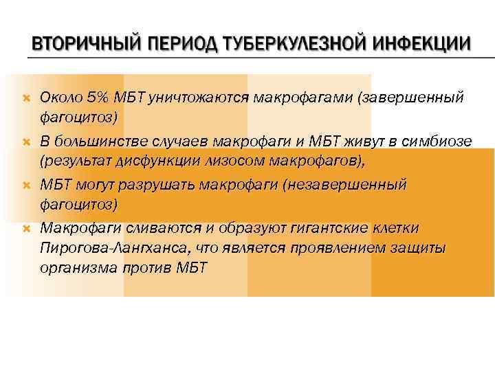Около 5% МБТ уничтожаются макрофагами (завершенный фагоцитоз) В большинстве случаев макрофаги и