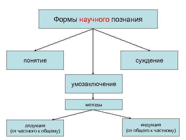 Формы научного познания   понятие