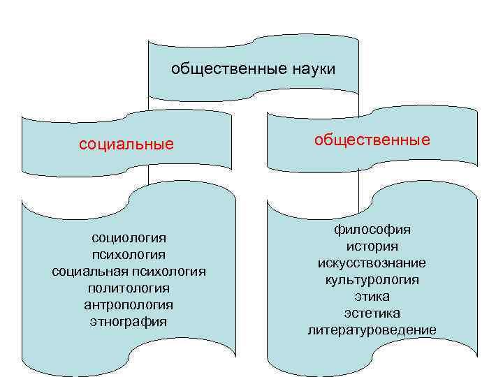 общественные науки  социальные   общественные