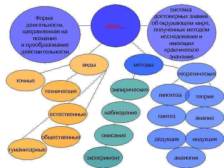 система   Форма