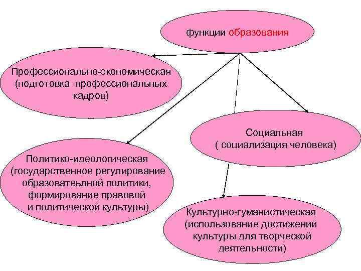 функции образования  Профессионально-экономическая (подготовка профессиональных