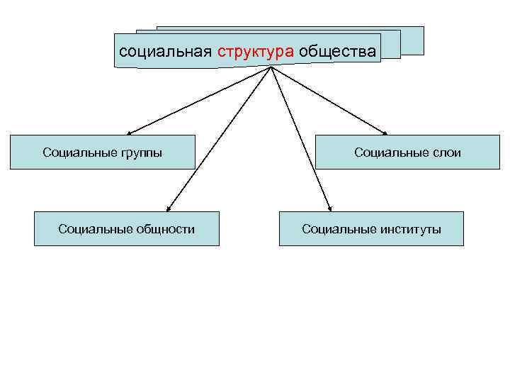 социальная структура общества Социальные группы    Социальные слои