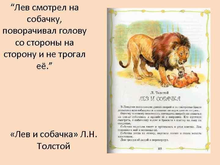 Рассказ лев и собачка толстой с картинками