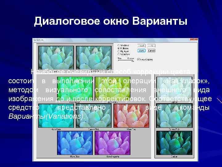 Диалоговое окно Варианты   Наиболее очевидный способ коррекции цвета состоит в выполнении