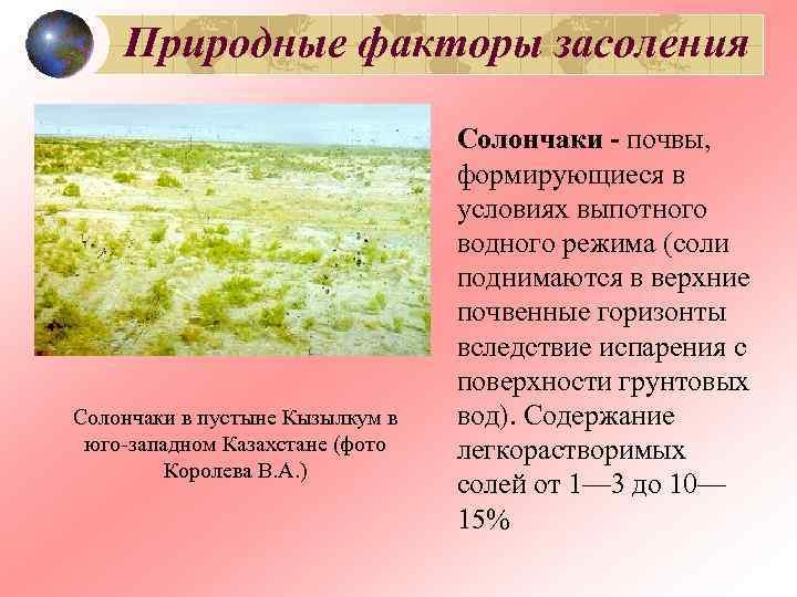 Природные факторы засоления      Солончаки - почвы,