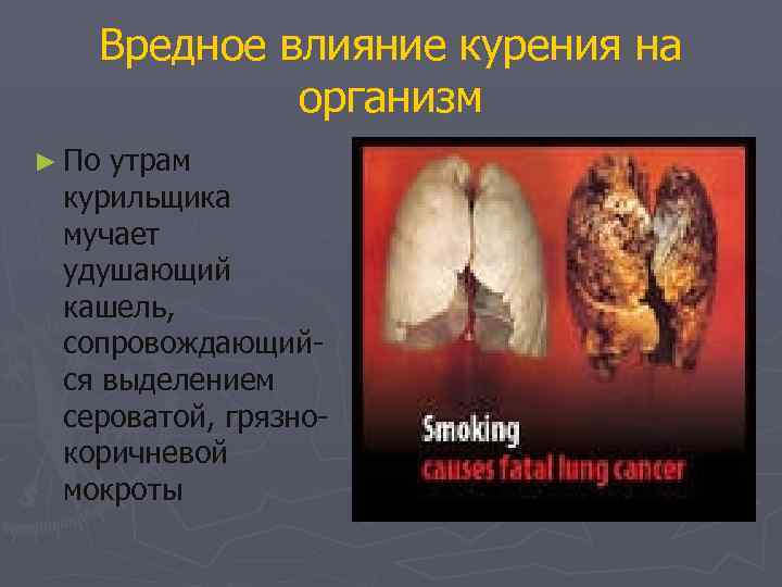 Вредное влияние курения на   организм ► Поутрам курильщика мучает удушающий