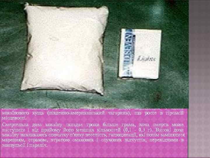 Кокаїн - алкалоїд, що володіє наркотичною дією, виділяється з листя кокаїнового куща (південно-американський чагарник),