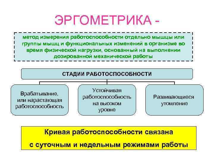 ЭРГОМЕТРИКА -  метод измерения работоспособности отдельно мышцы или  группы