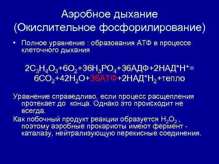 Аэробное дыхание (Окислительное фосфорилирование) • Полное уравнение : образования АТФ в процессе