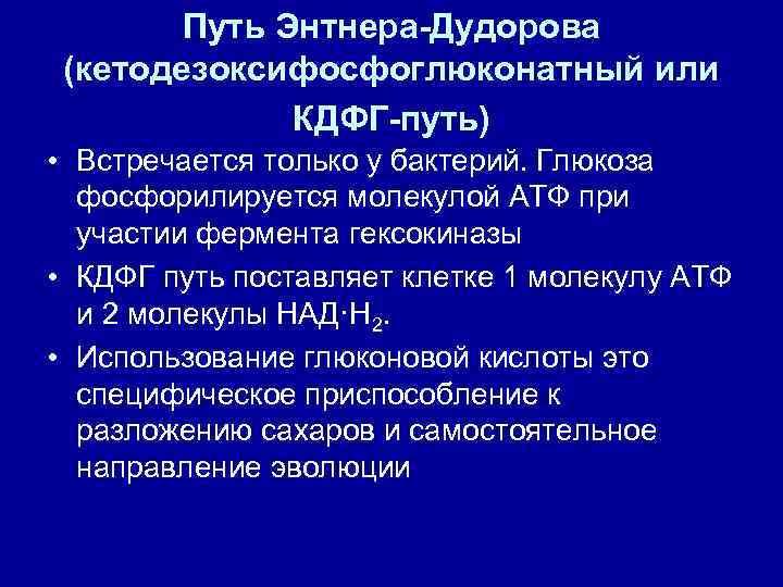 Путь Энтнера-Дудорова (кетодезоксифосфоглюконатный или    КДФГ-путь)  • Встречается только