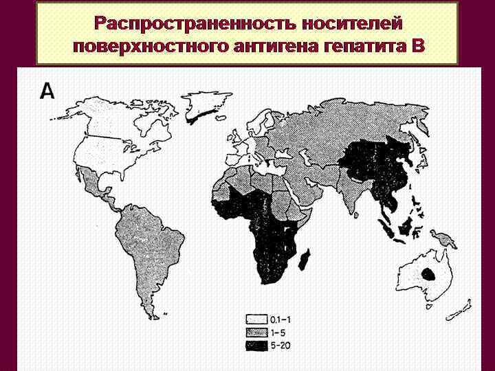 Распространенность носителей поверхностного антигена гепатита В