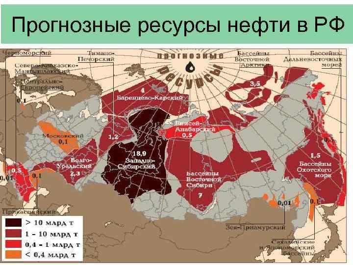 Прогнозные ресурсы нефти в РФ