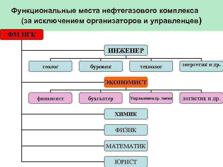 Функциональные места нефтегазового комплекса  (за исключением организаторов и управленцев) ФМ НГК