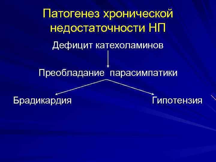 Патогенез хронической  недостаточности НП  Дефицит катехоламинов Преобладание парасимпатики Брадикардия