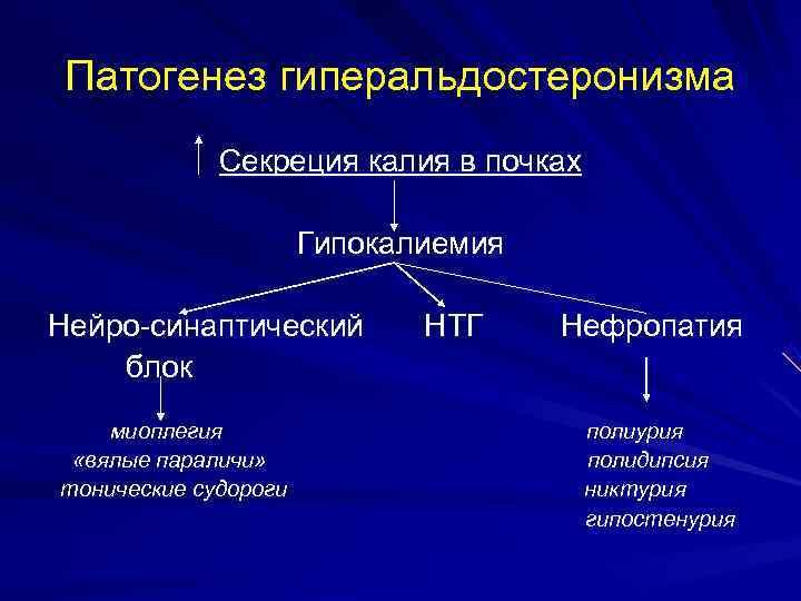 Патогенез гиперальдостеронизма   Секреция калия в почках    Гипокалиемия Нейро-синаптический