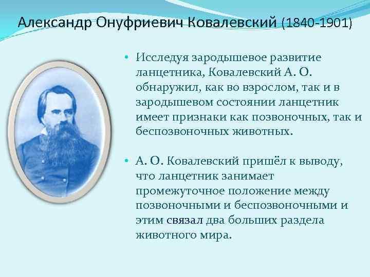 Александр Онуфриевич Ковалевский (1840 -1901)   • Исследуя зародышевое развитие   ланцетника,