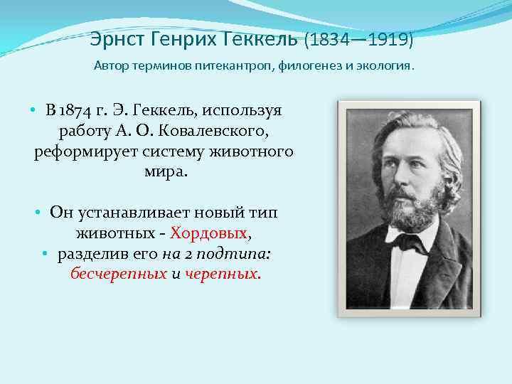 Эрнст Генрих Геккель (1834— 1919)   Автор терминов питекантроп, филогенез и