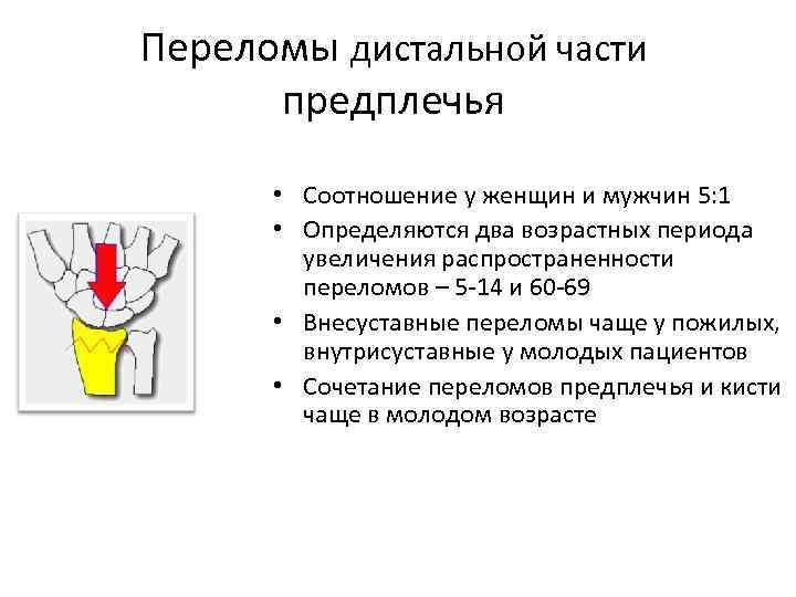 Переломы дистальной части предплечья • Соотношение у женщин и мужчин 5: 1 • Определяются