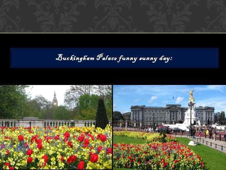 Buckingham Palace funny sunny day: