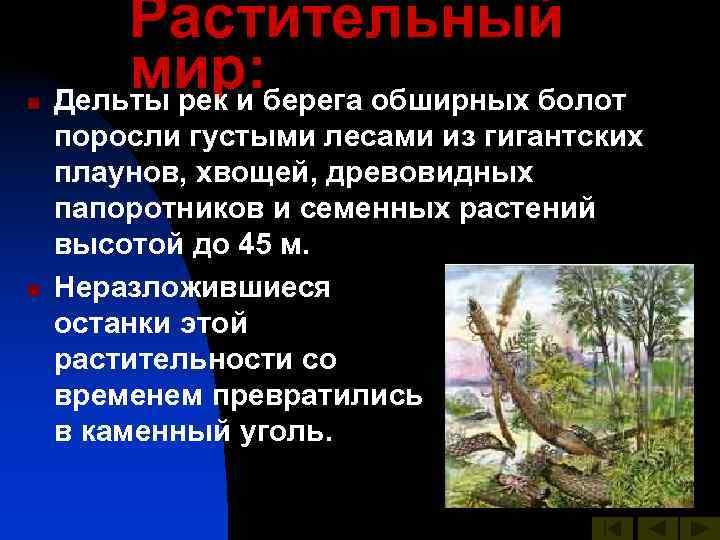 Растительный n   мир: Дельты рек и берега обширных болот поросли