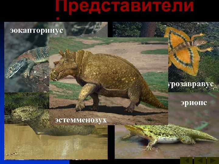 Представители лантанозух  : эокапторинус  иностранцевия     двинозавр