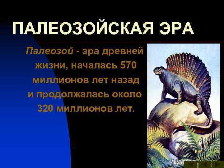 ПАЛЕОЗОЙСКАЯ ЭРА Палеозой - эра древней жизни, началась 570  миллионов лет назад