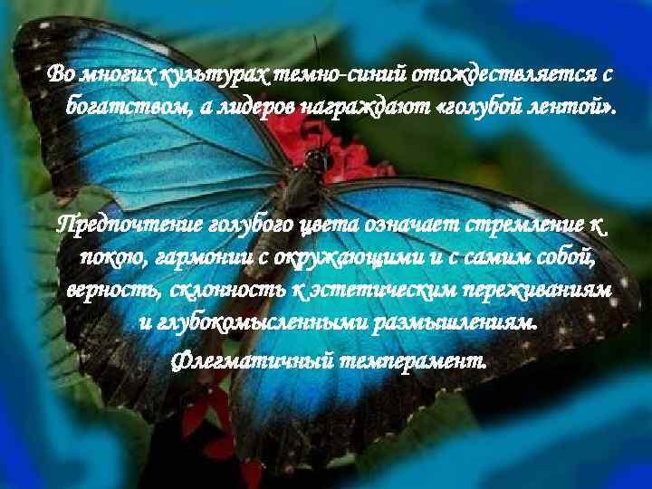 Во многих культурах темно-синий отождествляется с богатством, а лидеров награждают «голубой лентой» . Предпочтение