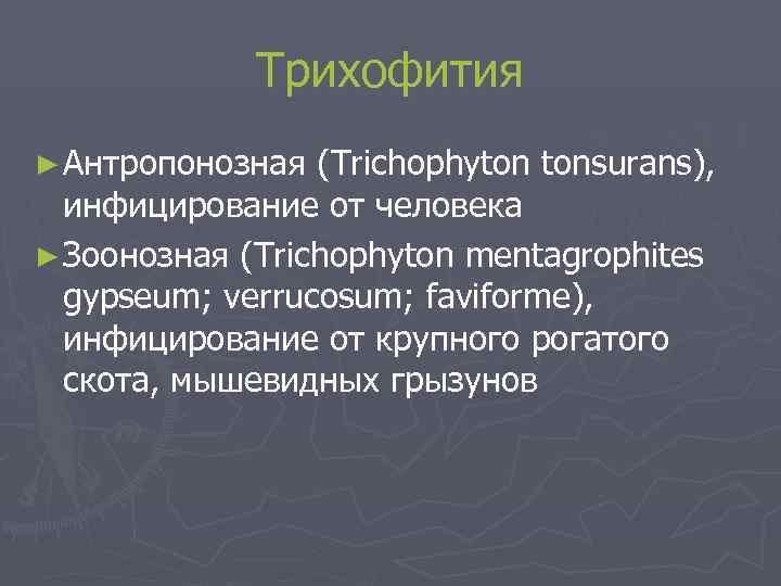 Трихофития ► Антропонозная (Trichophyton tonsurans),  инфицирование от человека ► Зоонозная