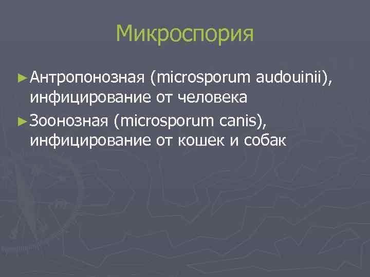 Микроспория ► Антропонозная (microsporum audouinii),  инфицирование от человека ► Зоонозная (microsporum
